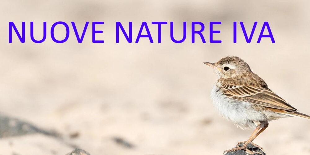 Nature IVA (SPECIFICHE)